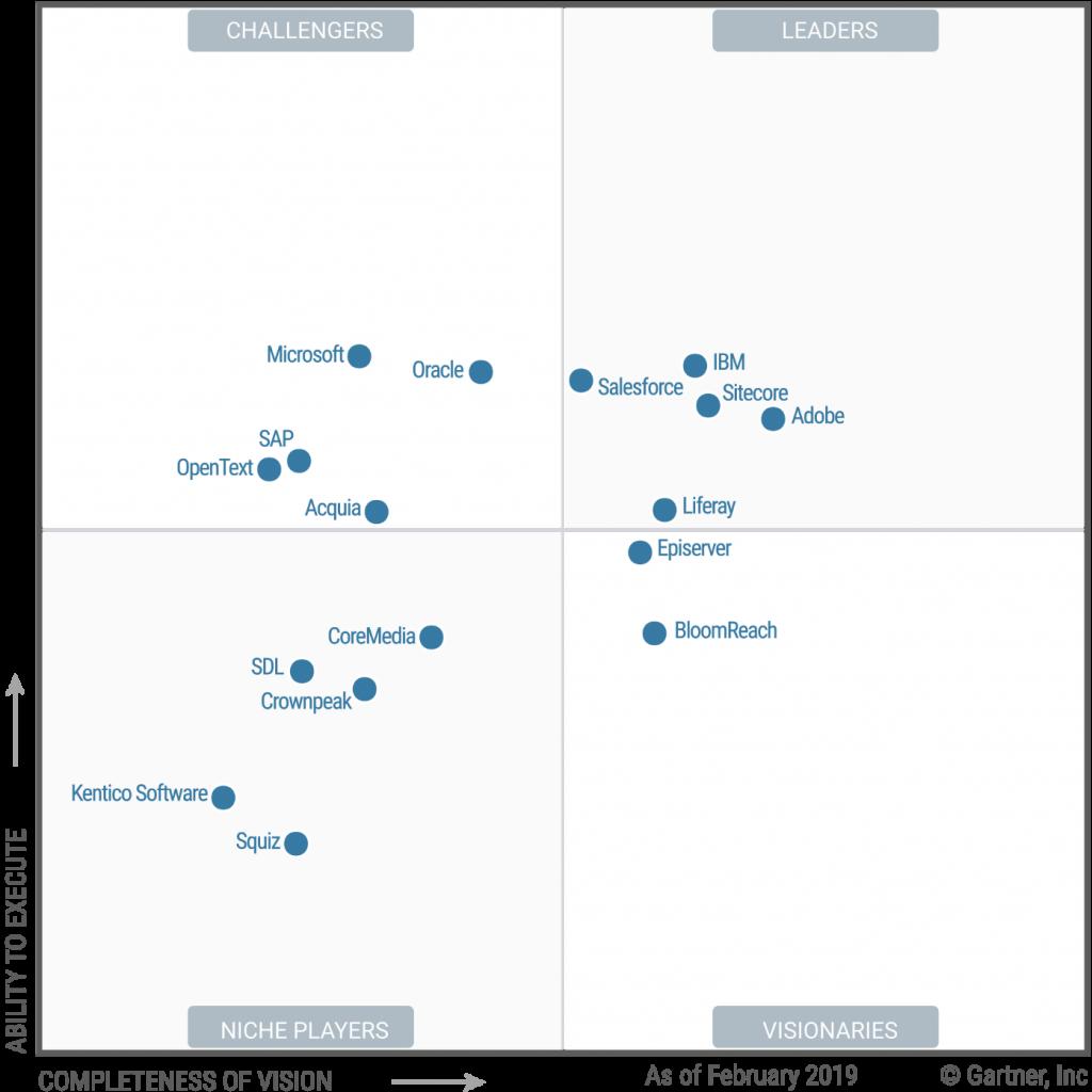 Salesforce Community Cloud as Leader